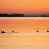 Family of ducks enjoying the setting sun over Lough Neagh