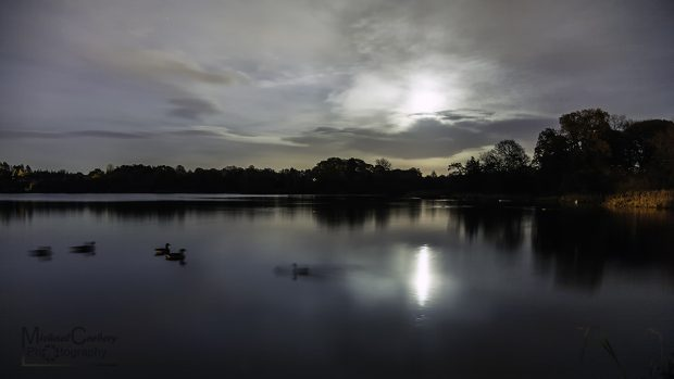 Moon Rising Over Lurgan Park Lake